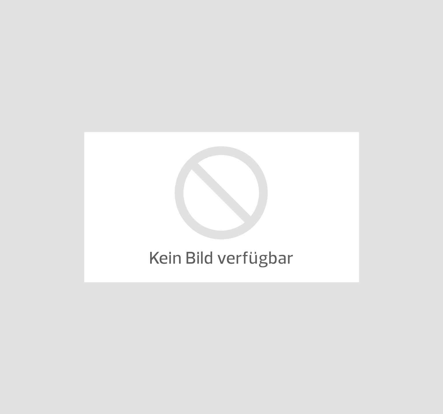 Blue man group sorat hotel ambassador berlin berlin for Indischer laden berlin