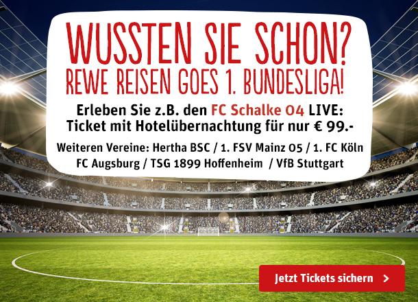 "REWE Reisen Bundesliga"" width="