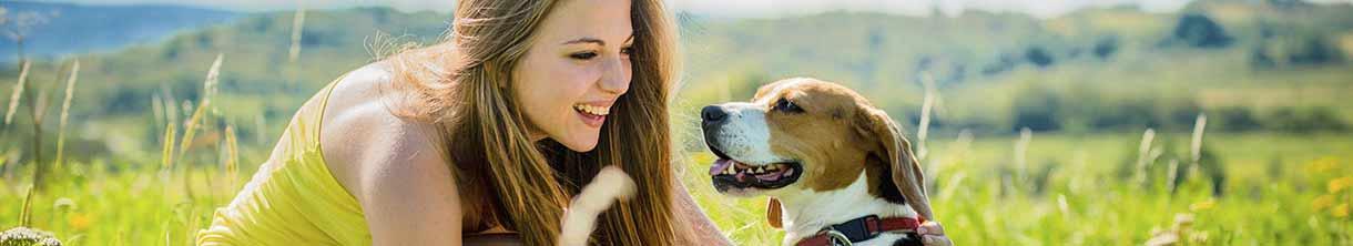 Single gruppenreisen mit hund