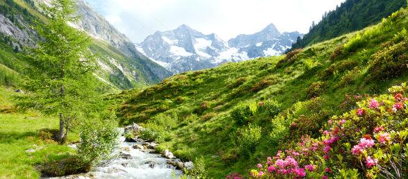 Urlaub Vorarlberg Gunstig Buchen Rewe Reisen