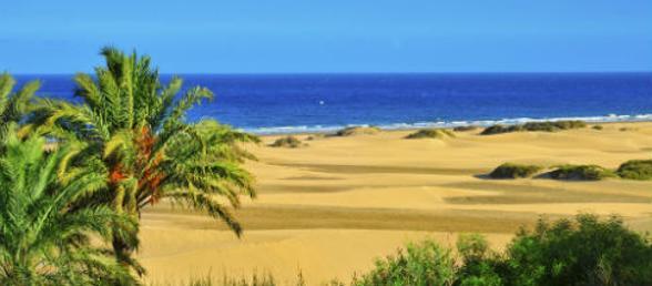 Urlaub Gran Canaria Gunstig Buchen Rewe Reisen