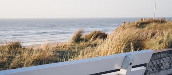 hotel zandvoort g nstig buchen rewe reisen. Black Bedroom Furniture Sets. Home Design Ideas